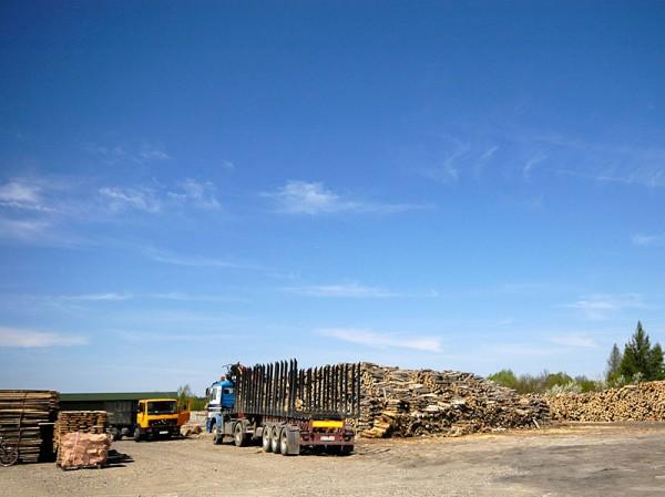drewno-kominowe-opalowe-2